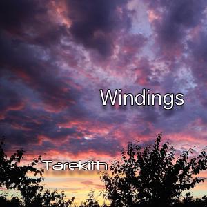 Windings300