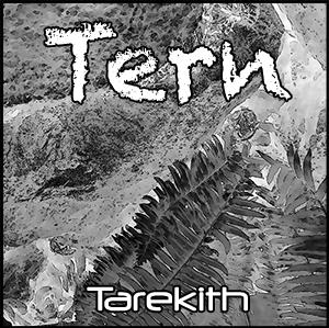 Tern300